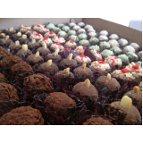 kit de doces para festa infantil preço Cidade Monções